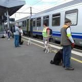 Découverte de la SNCF